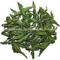 Natural Dried Stevia Leaf