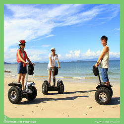 Adult 1000w 48v off road electric motorcycle, High quality electric scooters for sale