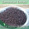 Sambucus Extract | Black Elderberry Extract | 5%-25% Anthocyanidins, 10%-20% Anthocyanins, Fruit Juice Powder