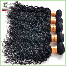 Hot Beauty Hair 8 inch jerry curl hair weave