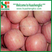 Chinese New Year Fresh Fuji Apple from factory