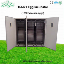 egg incubator china,Full automatic nature-form digital thermostat egg incubator/egg incubator thermometer for