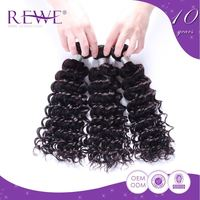 Silk Smooth Kinky Curly Brazilian Mink Real Remy Hair 350 7A Perruque