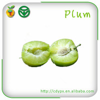 Fresh Green Plums for Sale