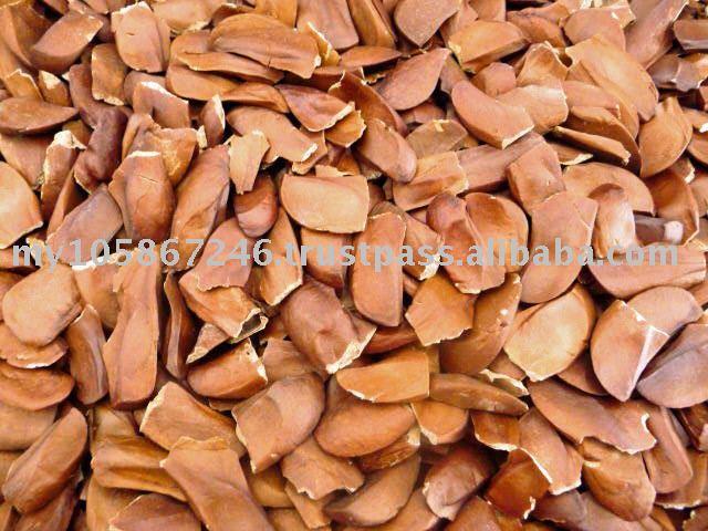 Mahoni semillas de caoba de semillas