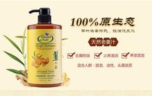 Japan Ginger Extract Shampoo Hair Loss Prevention