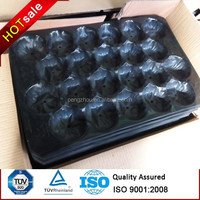 plastic compartment PP apple tray