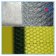 China cheapl Hexagonal Wire Netting/ fence netten mesh/ animal catching netsing/ wov