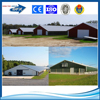 Steel frame chicken broiler house design