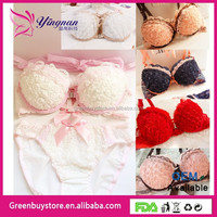 2015 Hot Sale Lingerie Sexy Yong Girls and Lady's Brassiere Sets Free Shipping