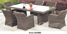 PE Rattan Outdoor Furniture Dining Table Rattan Chair (DH-9803)