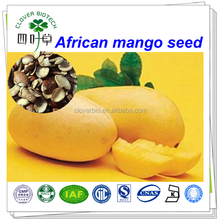 lose weight 4:1 african wild mango seed extract