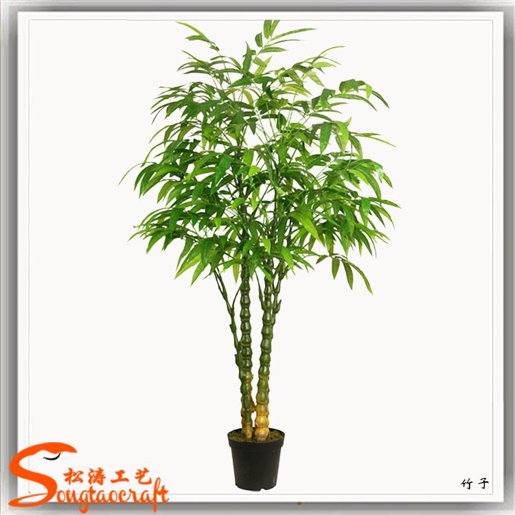 2015 pre o de f brica venda quente todos os tipos de - Plantas de interior tipos ...