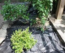 [FACTORY]hotsale Cheap PP Woven Weed Control/Landscape/Ground Cover Fabric