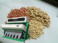 Newest Peanuts Color Sorter Machine With 6 Slide Boards And 384 Channels