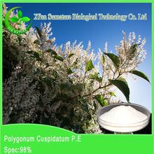 Top quality Resveratrol powder healthcare plant extract natural Radix Glycyrrhizae extract powder