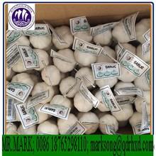 Supply Purple Garlic Natural Garlic Fresh Garlic Farming In China