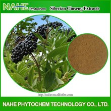 medicine raw material Siberian ginseng siberian ginseng extract for Expanding blood vessel with low pesticide