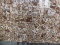 Factory price Low price black petrified wood Designs