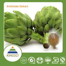 Hot Sale Kosher Certificate 100% Pure Natural Artichoke Extract Cynarin