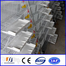 New !!!Wire mesh automatic cage quail/quail cage and water system(manufacturer)
