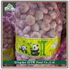 Fresh Hybrid Garlic For Sale, Fresh Hybrid Garlic 5.0CM, Chinese Fresh Hybrid Garlic 2015