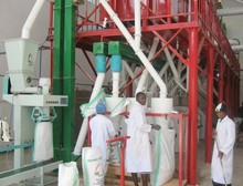 maize milling machines price 80ton per day/24hr maize degerminator and maize meal making machine