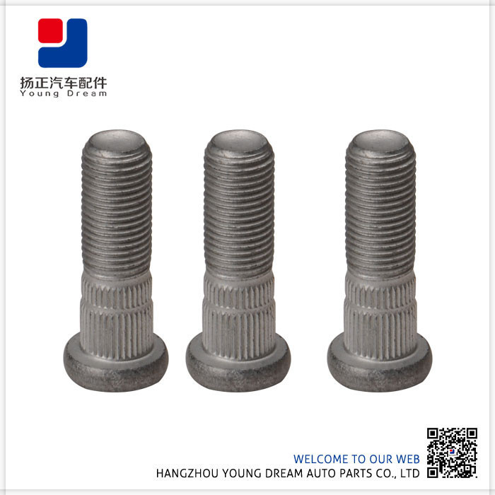 High End Top Quality Factory Made Expansion Stainless Steel 316 Bolt