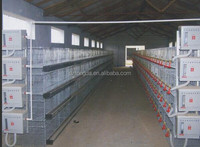 chicken cages/layer poultry cages for kenya farms/poultry battery cage for nigerian farm