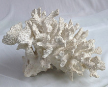 9 inch wholesale artificial coral
