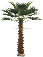 the simulation/fake of palm tree potted plant useed to decoration indoors and outdoor
