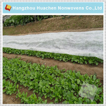 China Supplier Ground Cover Use Agricultural Nonwoven Fabric