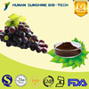 Low Price Vitis vinifera L. Extract Powder / Proanthocyanidin / grape seed extract for antioxidant & antifatigue.