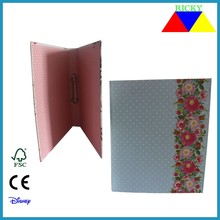 Ricky FF-R001 2015 New Products High Quality A4 Fc Size 2 inch 3 inch File Box, Box File