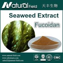 Best Price Factory Supply Seaweed Extract/Fucoidan Extract/Fucoidan