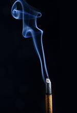 Wholesale Air fresh herbal high quality car incense