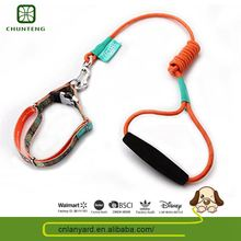Personalized Pet Product Dog Leashes And Collar For Pet Animal