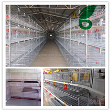 New type modern style advanced design chicken layer cage on hot sale