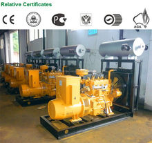 Fashion classical biogas generator for power supply