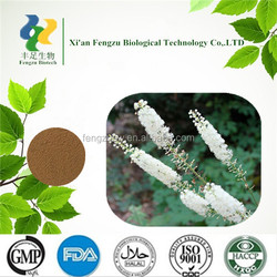 Top sale and high quality black cohosh extract powder