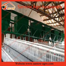 poultry cage feeding system in United states