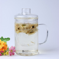450ml lead free hand blown drinkware set personalized OEM tea filter glass drinking mug for sale glass shot cup plant