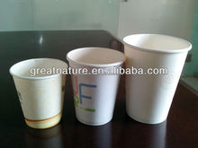 China paper and plastic cup manufacturer