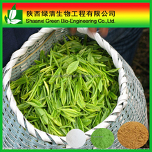 Polyphenol,Egcg/ Beverage Green Tea Extract/Pure Natural Green Tea Extract Polyphenol98% Catachins70% Egcg50% For Capsule