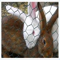 """1/4"""" 3/4"""" Cheap Chicken Wire /Rabbit wire Mesh /Galvanized Hexagonal Wire Mesh"""