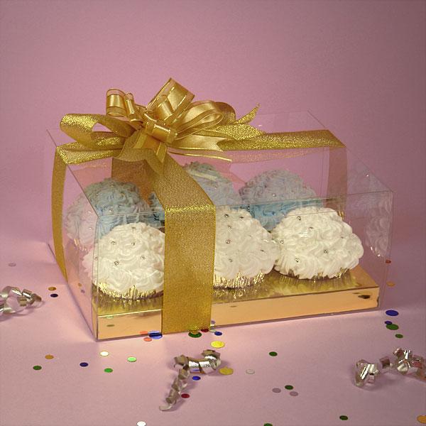 11-15 plastic box-JLC (11).jpg
