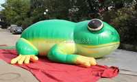 inflatable frog cartoon model red green color mascot replicas animal character costume