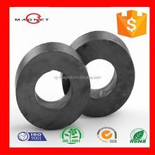Ring Magnet for Speaker, Ferrite Magnet in China