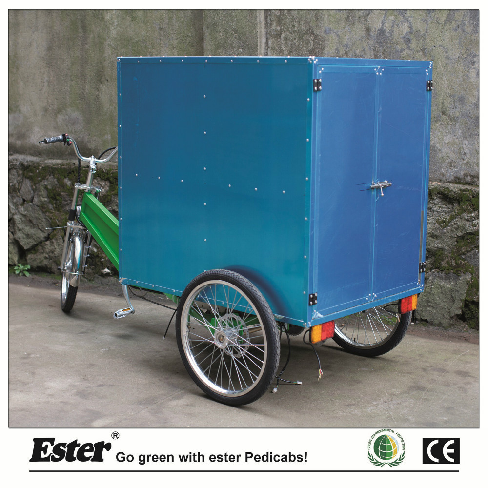 Delivery Cargo motor Trike