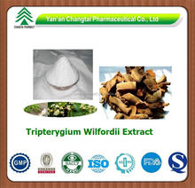GMP factory supply hot sale Tripterygium Wilfordii P.E.Triptolide